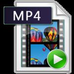 MP4動画形式