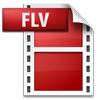 FLV動画